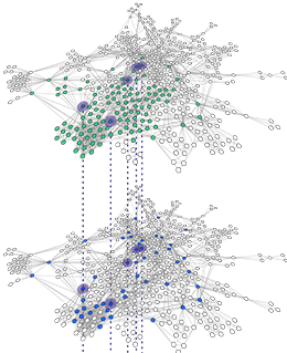 networks-and-performance-home